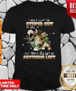 Cat I Would Slap The Stupid Out Of You But There Wouldn't Be Anything Left Shirt