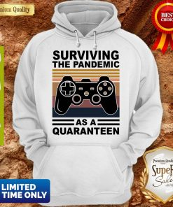Game Surviving The Pandemic As A Quaranteen Hoodie