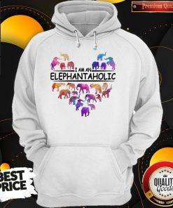 Pretty Heart I Am An Elephant Aholic Hoodie