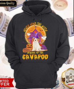 Funny Never Mind The Witch Beware Of The Cavapoo Halloween Moon Hoodie