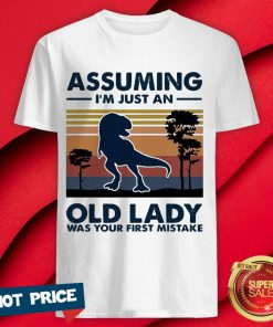Dinosaur Assuming I'm Just An Old Lady Was Your First Mistake Vintage Retro Shirt
