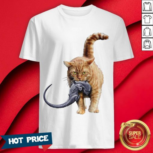 Official Meow Shirts