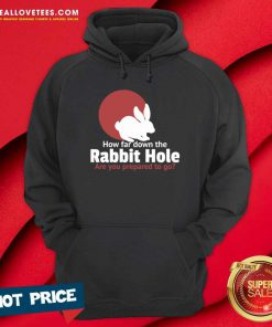 How Far Down The Rabbit Hole Are You Prepared To Go Hoodie - Design By Reallovetees.com